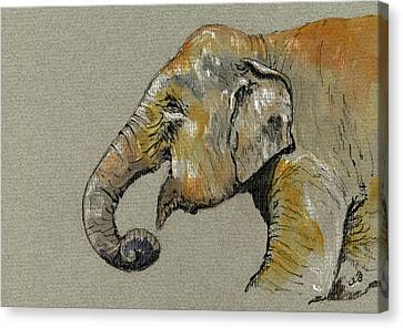 Elephant Indian Canvas Print by Juan  Bosco