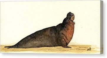 Elephant Seals Canvas Print - Elephant Seal by Juan  Bosco