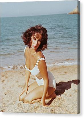 Elizabeth Taylor In Suddenly, Last Summer  Canvas Print by Silver Screen