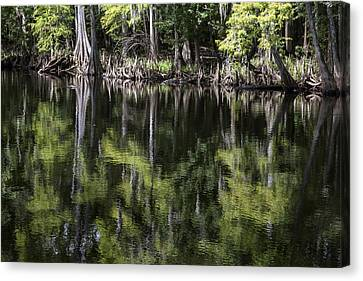 Emerald Reflections Canvas Print