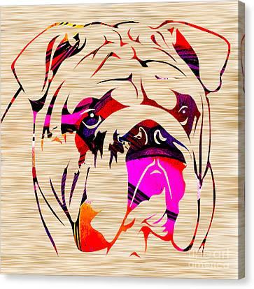 English Bulldog Canvas Print by Marvin Blaine