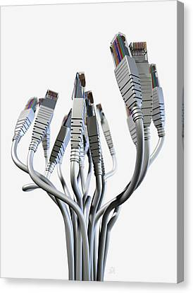 Ethernet Abstract Bouquet Canvas Print by Allan Swart