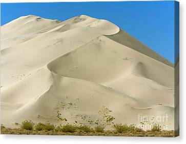 Eureka Dunes In Death Valley Canvas Print by Yva Momatiuk John Eastcott