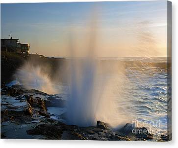 Blowhole Canvas Print - Explosion by Mike  Dawson