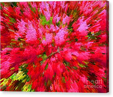 Explosion Of Spring Canvas Print by Alys Caviness-Gober