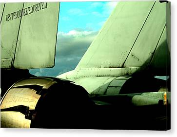 F-14 Tomcat Canvas Print by Maxwell Amaro