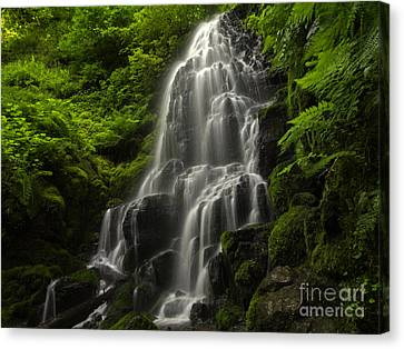 Fairy Falls Canvas Print by Tim Moore