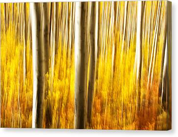 Canvas Print featuring the photograph Fall Abstract by Ronda Kimbrow