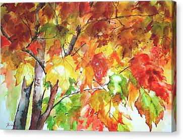 Fall Folliage  Canvas Print