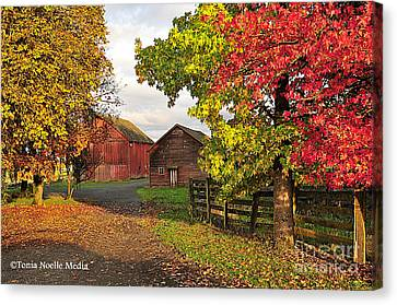 Fall On A Farm In Oregon Canvas Print by Tonia Noelle