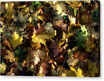 Canvas Print featuring the digital art Fallen Leaves by Ron Harpham