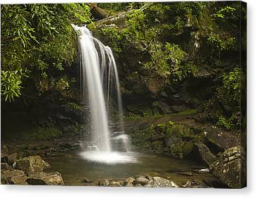 Falling Water Canvas Print by Andrew Soundarajan