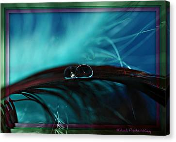 Canvas Print featuring the photograph Fantasy by Michaela Preston