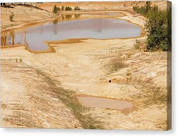 Dry Lake Canvas Print - Farmer's Watering Hole by Ashley Cooper