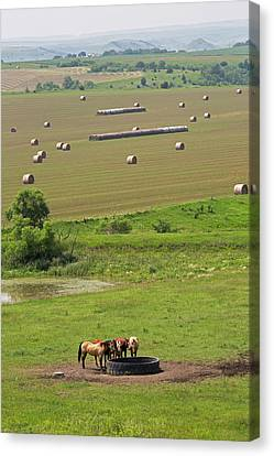 Farming In South Dakota Canvas Print by Jim West