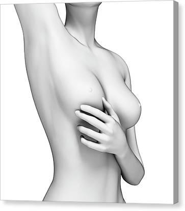 Female Examining Her Breast Canvas Print by Sebastian Kaulitzki