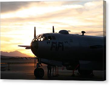 Canvas Print featuring the photograph Fi-fi by David S Reynolds