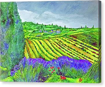 Fields At Dievole Canvas Print
