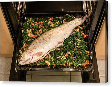 Silver-filled Canvas Print - Filled Salmon Trout by Frank Gaertner