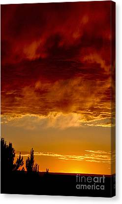 Canvas Print featuring the photograph Fire In The Sky by Gina Savage