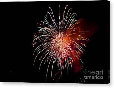 Fireworks Canvas Print by Grace Grogan