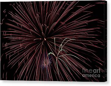 Fireworks Canvas Print by Jason Meyer