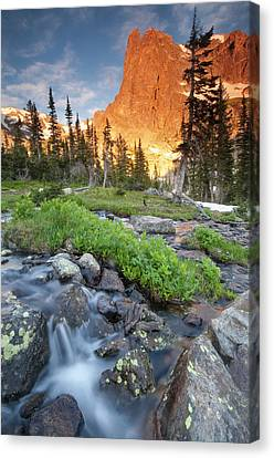 First Light On Long S Peak At Chasm Canvas Print by Carl Johnson