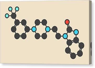 Flibanserin Sexual Desire Drug Molecule Canvas Print