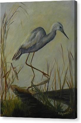 Florida Native Bird On A Fall Morning Canvas Print