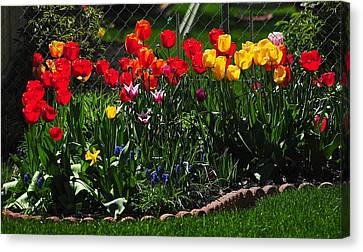 Flower Garden Canvas Print by Frozen in Time Fine Art Photography