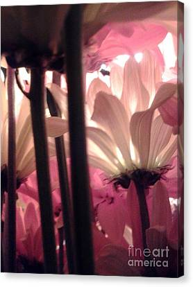 Flowerlife2 Canvas Print by Susan Townsend