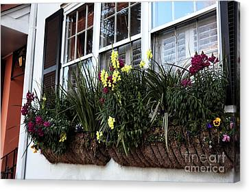 Flowers In The Window Canvas Print by John Rizzuto