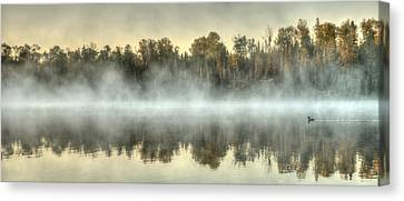 Foggy Loon  Canvas Print by Shane Mossman