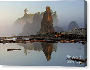Foggy Sunrise Canvas Print by Yefim Bam