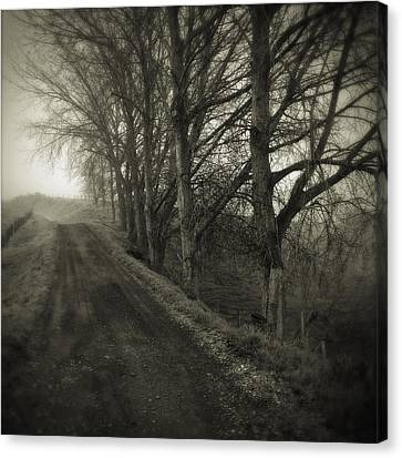 Foggy Trail Canvas Print by Les Cunliffe