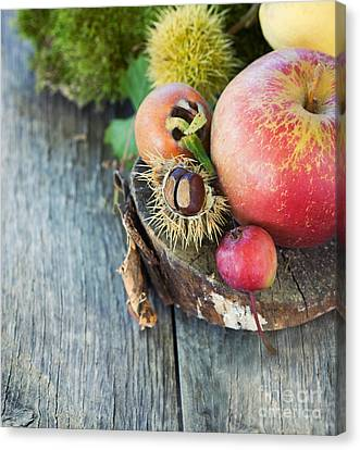 Npetolas Canvas Print - Forest Fruit by Mythja  Photography