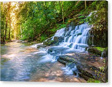 Forest Stream And Waterfall Canvas Print by Alexey Stiop