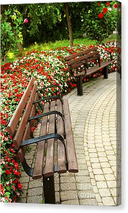 Formal Garden Canvas Print by Elena Elisseeva