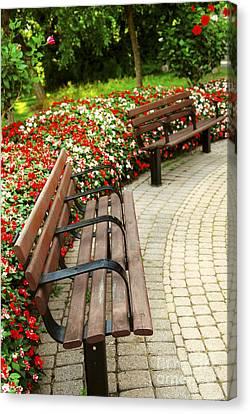 Formal Garden Canvas Print by Elena Elisseeva