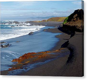 Fort Bragg Coastline Canvas Print