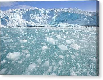 Fortuna Glacier Descending  Canvas Print