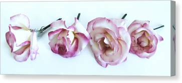 Four Roses Canvas Print by Marianna Mills