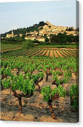 France, Bonnieux, Vaucluse, Luberon Canvas Print by David Barnes