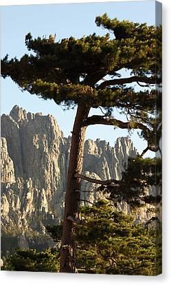 France, Corsica, La Alta Rocca, Col De Canvas Print