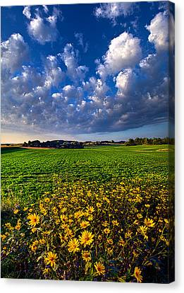 Fresh Air Canvas Print by Phil Koch