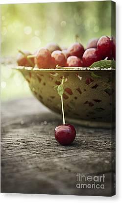 Fresh Cherry Canvas Print by Mythja  Photography