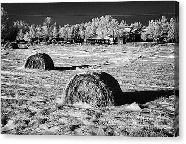 frozen snow covered hay bales in a field Forget Saskatchewan Canada Canvas Print by Joe Fox