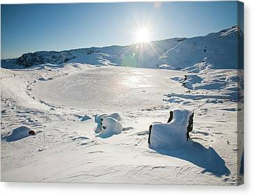 Frozen Tarn Canvas Print by Ashley Cooper