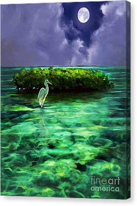 Full Moon Fishing Canvas Print by David  Van Hulst