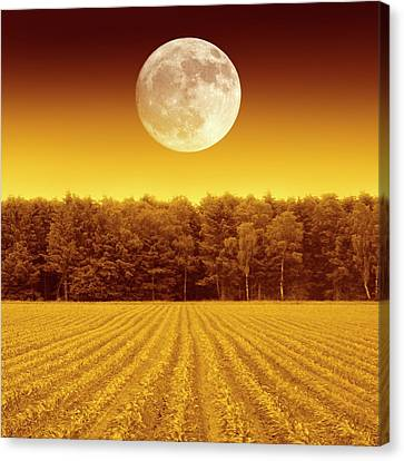 Farm System Canvas Print - Full Moon Over A Field by Detlev Van Ravenswaay
